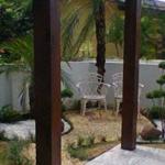 Quintal eco - paisagismo, jardinagem, projeto de jardim, jardim