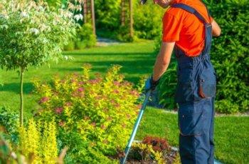 6 Estilos de decoração para Jardins. Entenda Antes!