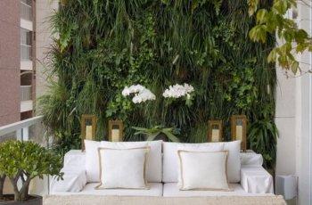 Dicas de como montar uma parede verde que dê pouca manutenção – Entenda Antes!