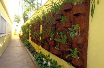 Quais plantas usar no jardim vertical? Entenda Antes!