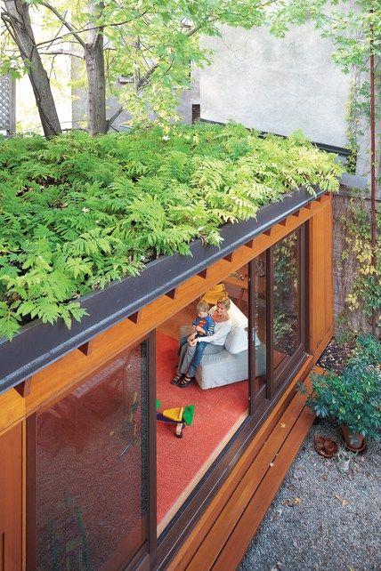 telhado verde - entenda antes