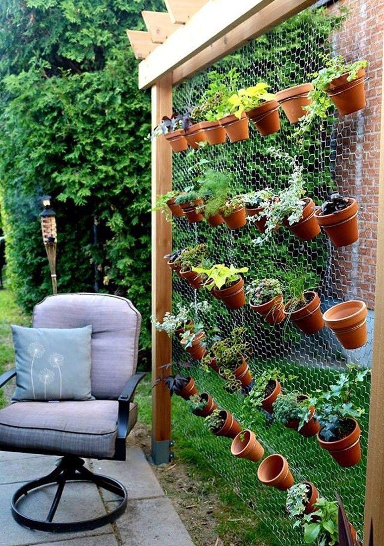 plantas jardim vertical - entenda antes