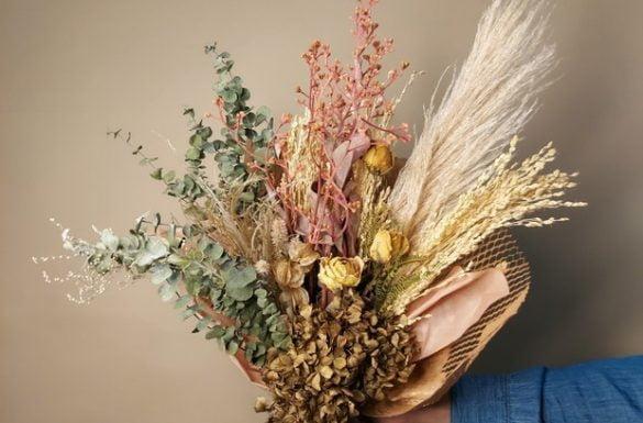 flores secas - entenda antes
