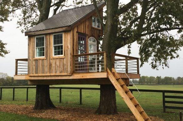 Modelos de casas na árvore - Entenda Antes