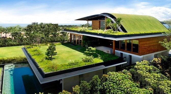 Materiais Ecológicos - Construção sustentável - Telhado verde