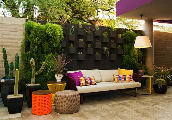 plantas ornamentais - jardim vertical