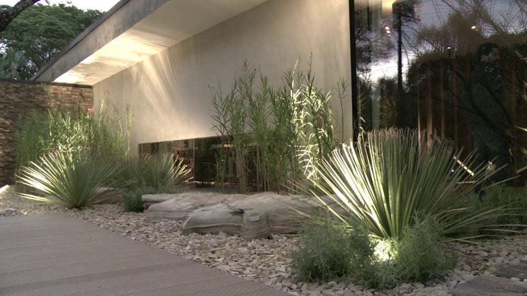 Luzes para jardim desértico