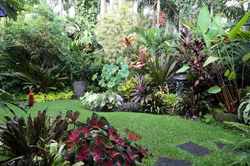 Luzes para jardim tropical