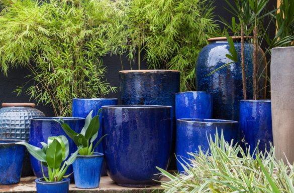 Tudo o que você precisa saber sobre vasos vietnamitas